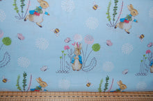 fabric shack sewing quilting sew fat quarter cotton quilt patchwork dressmaking beatrix potter peter rabbit panel flopsy mopsy jemima puddleduck mrs tiggywinkle jeremy fisher (5)