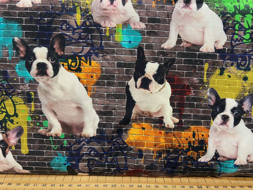 fabric shack sewing dressmaking clothes making t-shirt jersey stretch digital freench bulldog frenchies graffitti