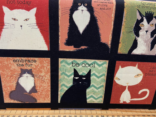 fabric shack sewing quilting sew fat quarter cotton patchwork quilt dan di paulo clothworks snarky cats kitten kitty blocks