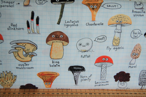 fabric shack sewing quilting sew fat quarter cotton quilt patchwork elsie gravel michael miller mushrooms funghi toadstools woodland animals trees (8)