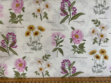 fabric shack sewing quilting sew fat quarter cotton quilt patchwork lewis & and irene botanic botanical garden bumble bee bees honey floral flower rose dog victorian walled names white