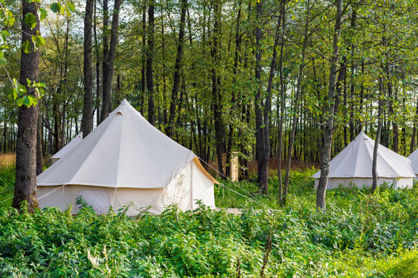 glamping in forest