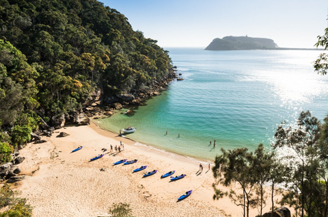 Pittwater Palm Beach Mackeral Beach Kayaking