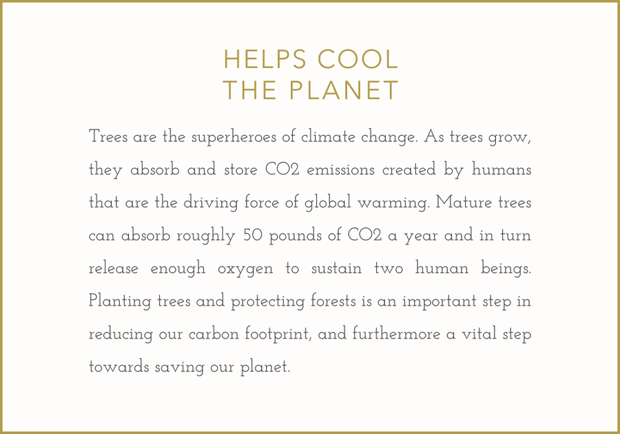 Trees cool the planet.