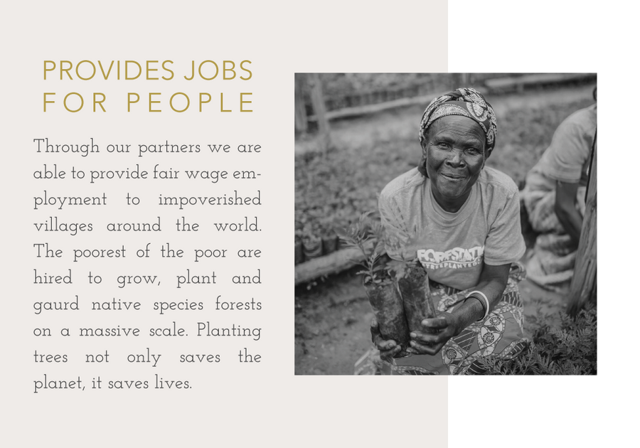 Trees provide jobs for people.