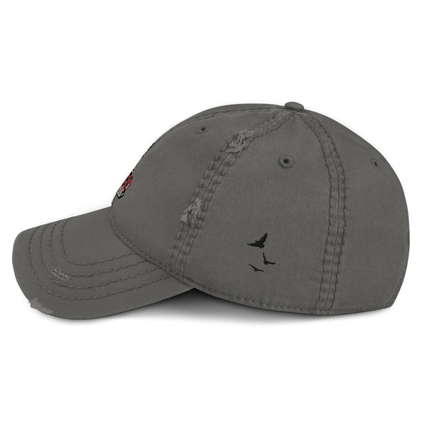 FreeBirdss Distressed Dad Hat