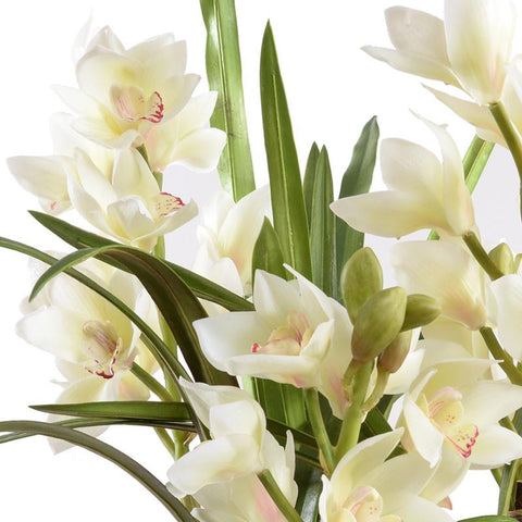 Faux Cymbidium Orchid Plants