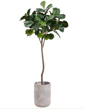 Faux Tree in Planter - Hamptons Furniture, Gifts, Modern & Traditional