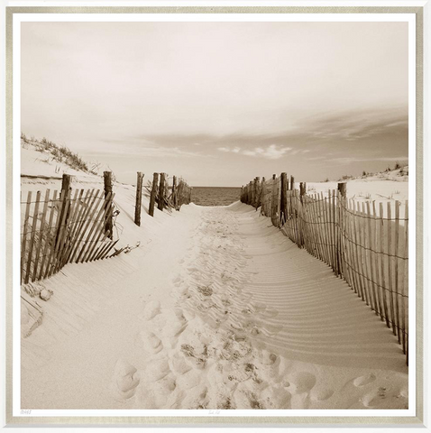 beach walk sand dunes photo