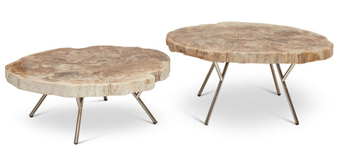Solid petrified Wood Coffee Tables, sold as a set of 2