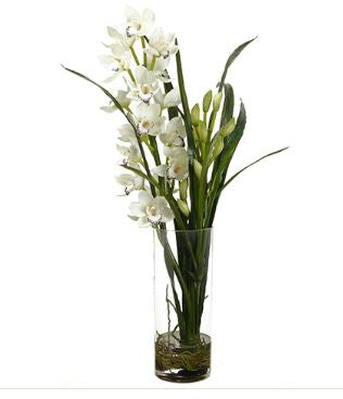 Faux White Cymbidium in Glass Vase - Hamptons Furniture, Gifts, Modern & Traditional