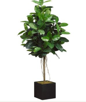 Faux Rubber Tree in Bamboo Container - Hamptons Furniture, Gifts, Modern & Traditional