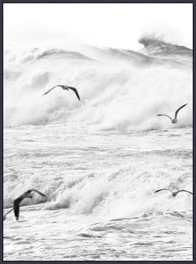 Glicee Print of Rough Seas and Birds on Canvas - Hamptons Furniture, Gifts, Modern & Traditional