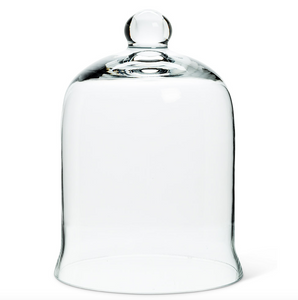 Glass Bell shaped cloche
