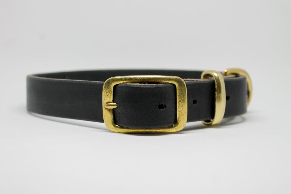 Black Leather dog collar with solid brass buckle and D ring