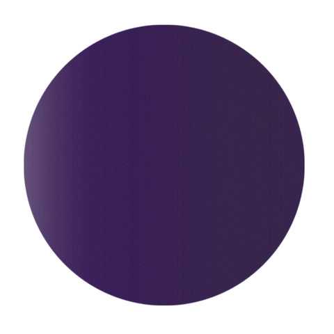Purple - NSI Secrets Prism Paint