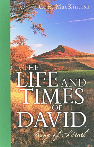 The Life and Times of David King of Israel
