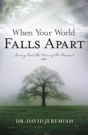 When Your World Falls Apart: Seeing Past the Pain of the Present