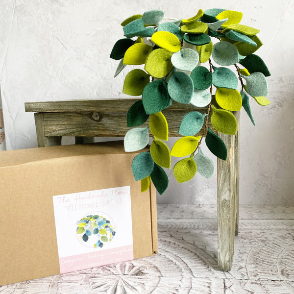 Evergreen Trailing Houseplant craft kit