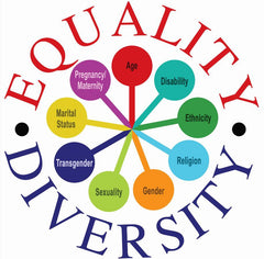 equality and diversity diagram