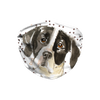 English Pointer Dog Paw Print Sublimation Face Mask