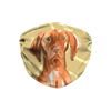 Vizsla Dog Tan Bones Sublimation Face Mask