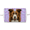 Border Collie Brown Purple Background Sublimation Face Mask
