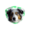 Australian Shepherd Dog Green Tie Dyed Sublimation Face Mask