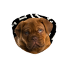 Dogue de Bordeaux Dark Bones Sublimation Face Mask