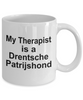 Drentsche Patrijshond Dog Owner Lover Funny Gift Therapist White Ceramic Coffee Mug