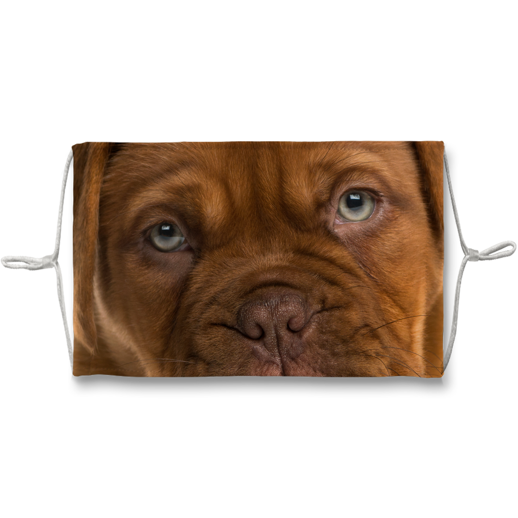 Dogue de Bordeaux Muzzle Sublimation Face Mask