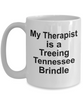 Treeing Tennessee Brindle Dog Owner Lover Funny Gift Therapist White Ceramic Coffee Mug