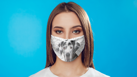 Great Dane Face Mask Washable Reusable Sublimation Printed Face Cover Art