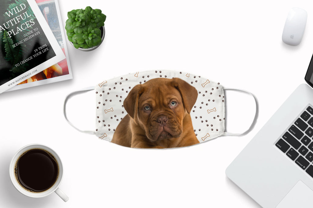 Dogue de Bordeaux Puppy Face Mask - washable, comfortable with carbon filter