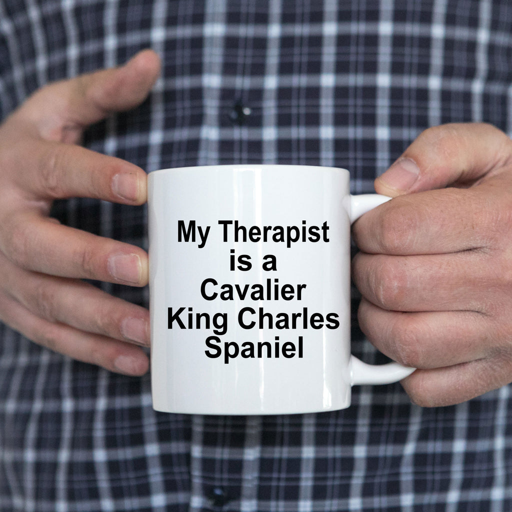 Funny Cavalier King Charles Spaniel Dog Owner Lover Gift Therapist White Ceramic Coffee Mug