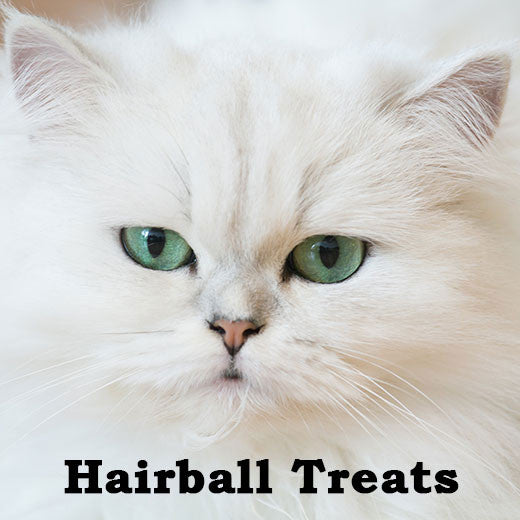 Hairball treats