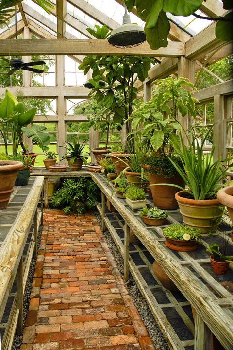 Great Crops for your Winter Greenhouse