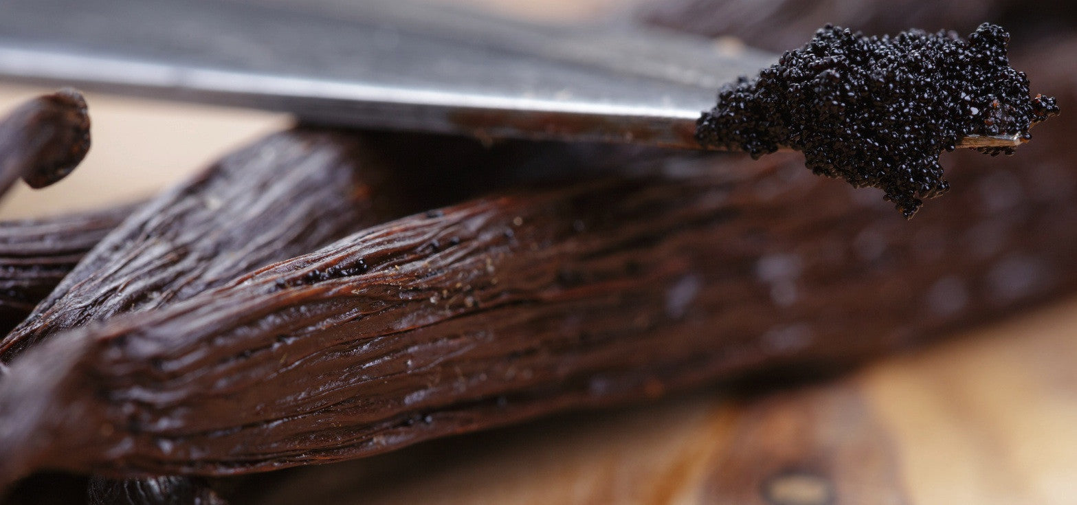 vanilla pods are used in every bottle of Battle Born Grooming Co's beard oil