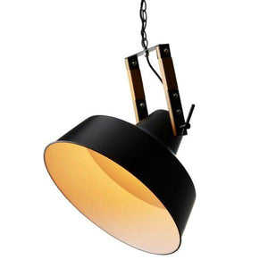 Projector Pendant Light