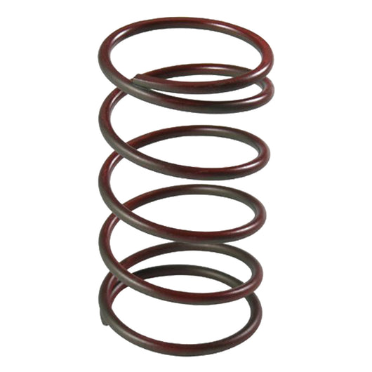TiAL 002191 Small Red Wastegate Spring