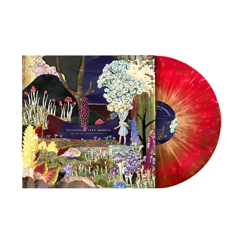 Psychedelic Porn Crumpets / And Now For The Whatchamacallit / LP 12""