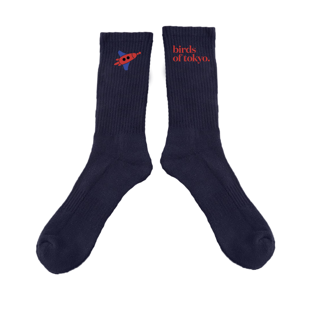 Human Design Socks / Navy