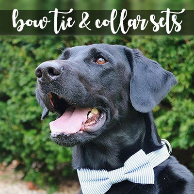 Dog Bow Tie and Collar Sets