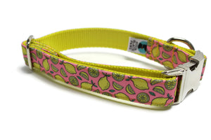 Lemon Canvas Dog Collar