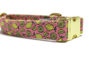 Pink Summer Lemon Dog Collar
