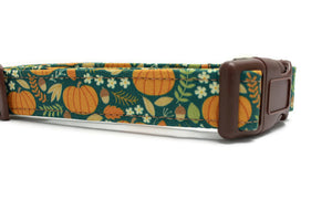 Autumn Pumpkin Fabric Dog Collar