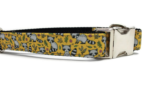 Raccoon Canvas Dog Collar