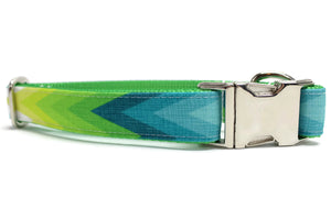 Blue and Green Summer Chevron Canvas Dog Collar