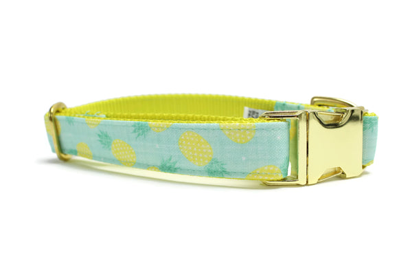 Mint Pineapple Canvas Dog Collar