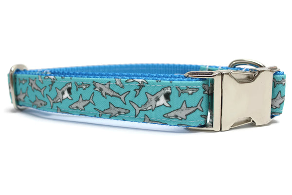 Teal Shark Canvas Dog Collar